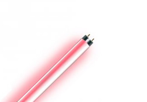 Lampe 30 Watt Rot